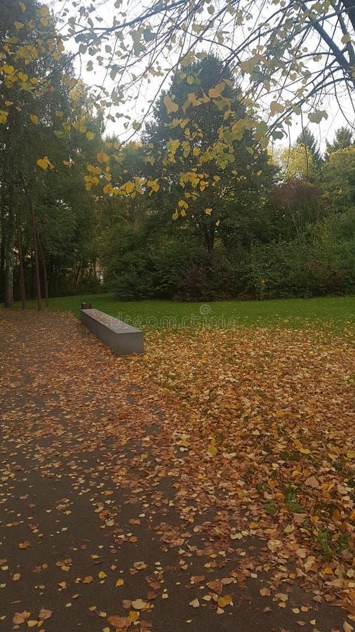 Park w Luksemburg zdjęcie royalty free