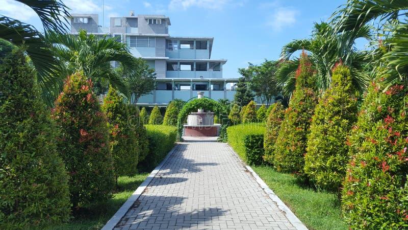 Park w szpitalu z naturalnymi roślinami które dają wrażeniu wygoda i spokój, obrazy stock