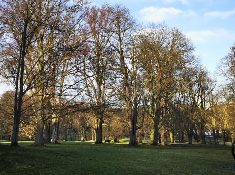 Park w Złym Homburg Niemcy obrazy royalty free