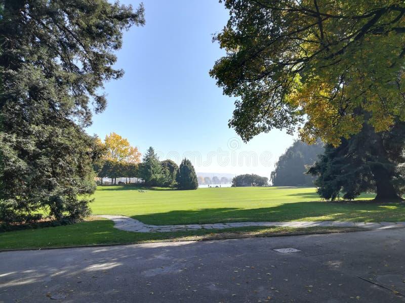 Park w Zurich Szwajcaria zieleni naturze zdjęcie stock
