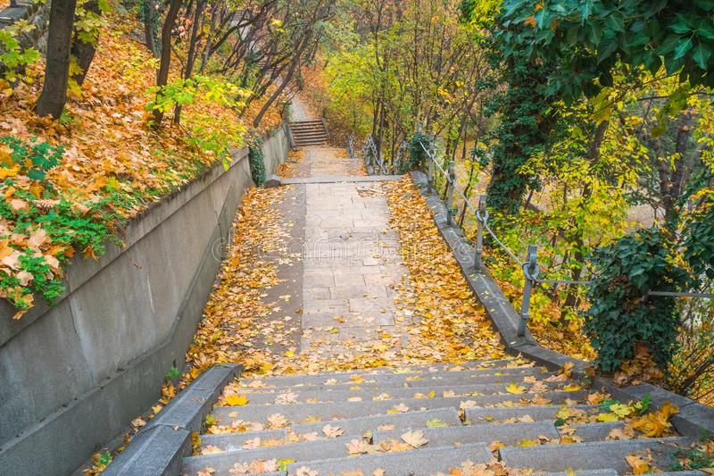 Park walkway at Buda Hill Castle, Budapest, Hungary. Autumn. Nature stock images