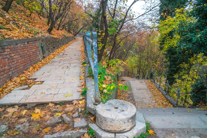 Park walkway at Buda Hill Castle, Budapest, Hungary. Autumn. Nature stock photo