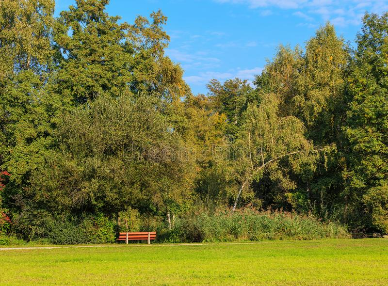 Park in Wallisellen, Switzerland in autumn.  royalty free stock image
