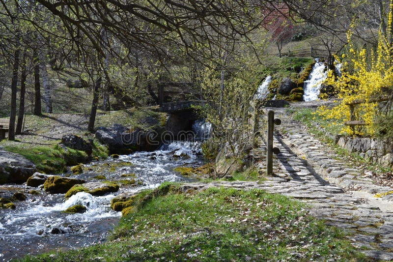 Park and waterfalls. Waterfalls in Italy, Canistro - La Sponga 865 m royalty free stock photos