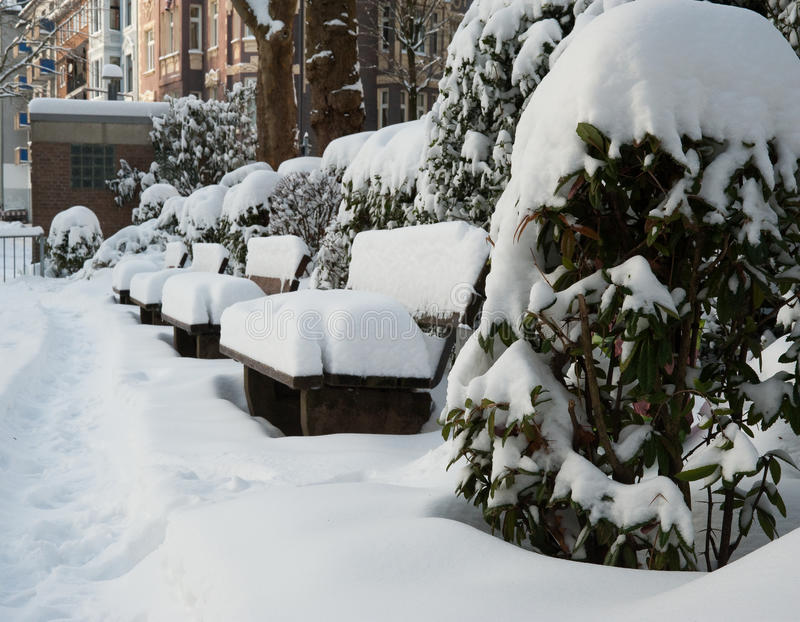 Download Park In Winter Stock Photography - Image: 17992242