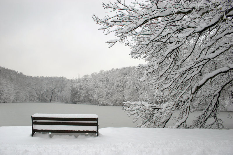 Download Park in winter stock image. Image of isolated, weather - 471727