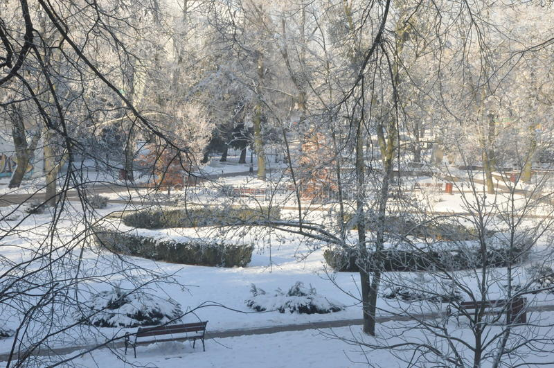 Park at winter. There is a park in Bielsk Podlaski city in Poland stock photos