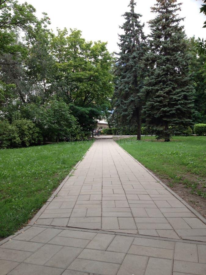 Park Yankovskogo royalty-vrije stock afbeelding