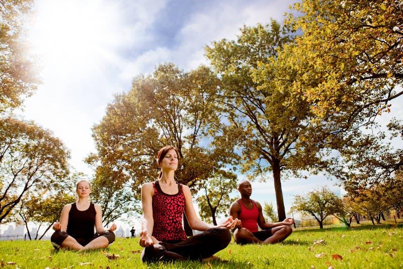 Park-Yoga lizenzfreie stockfotografie