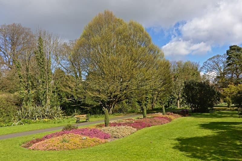 Park z kwiatu łóżkiem i wiele różni drzewa w Dublin ogródach botanicznych w wiośnie fotografia stock