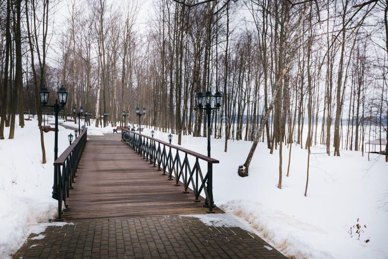 Parkbänke und -bäume im Winter lizenzfreie stockbilder