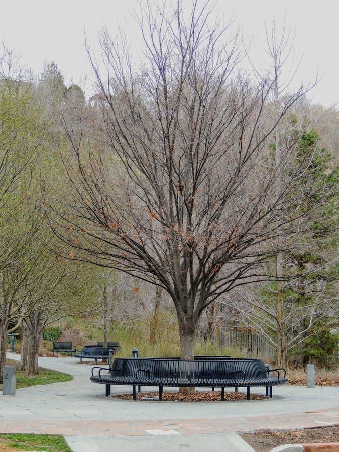 Parkbänke und -bahnen im Gedächtnis Grove parken in Salt Lake City Utah entlang dem Wasatch Front Rocky Mountains im Vorfrühling lizenzfreie stockfotos