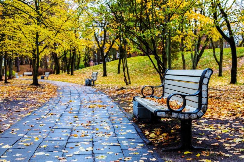 Parkbank im Herbst lizenzfreies stockbild