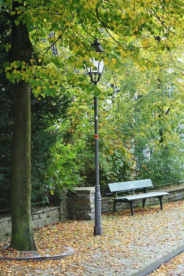 Parkbank unter einer Linde mit einer nostalgischen Straßenlaterne stockfotografie