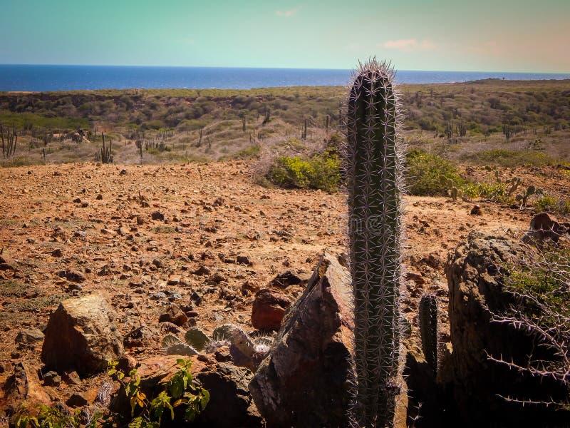 Parke Nacional Arikok Aruba fotografia stock