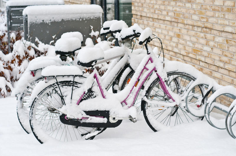 Parked bicycles stock image