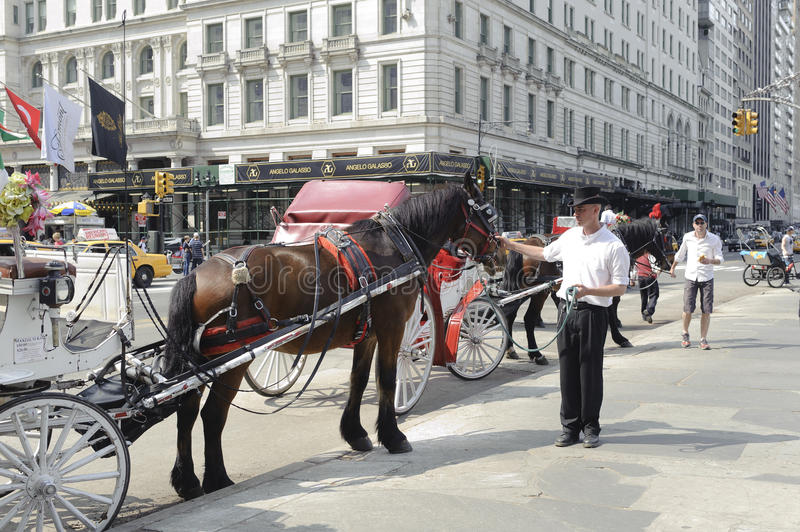 Download Parked Horse Carriage By Central Park Editorial Photo - Image: 32453956