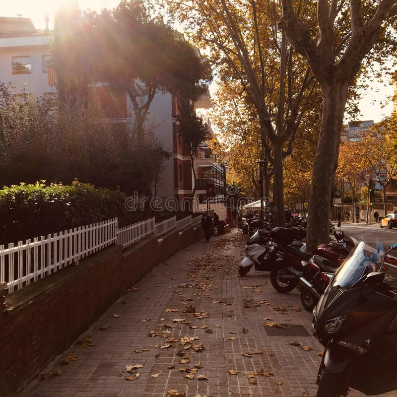 Parked motorcycles. On a sidewalk during Autumn stock images