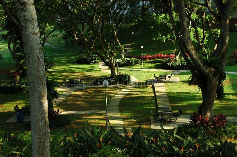 Parken stock afbeelding