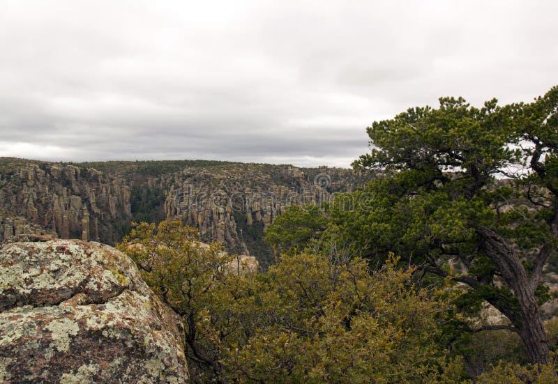Parkera av Chiricahua - Arizona - Förenta staterna royaltyfri fotografi