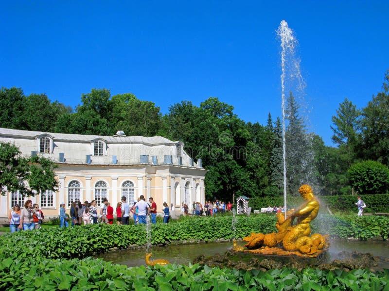 Parkera av Peterhof, Ryssland, springbrunn Tritonen, folk royaltyfria foton