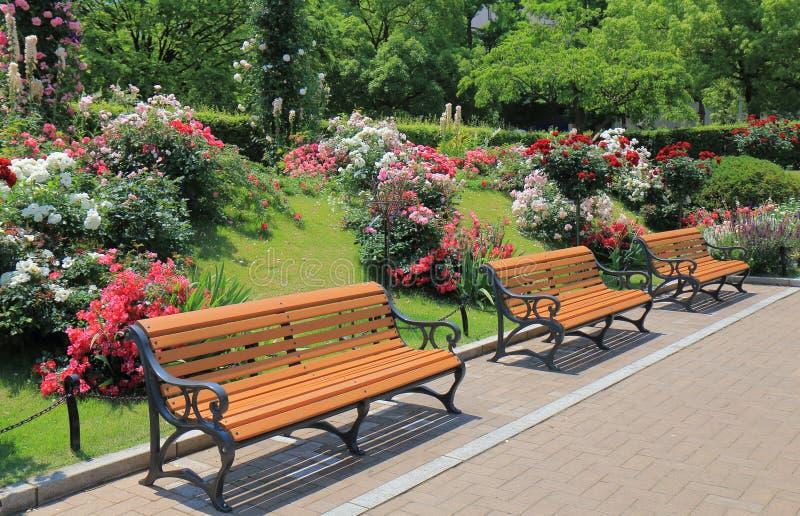 Parkera bänkblommaträdgården royaltyfria foton