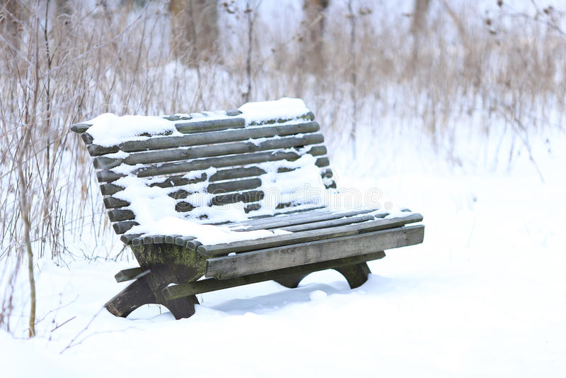 Parkera bänken i vinter royaltyfria bilder