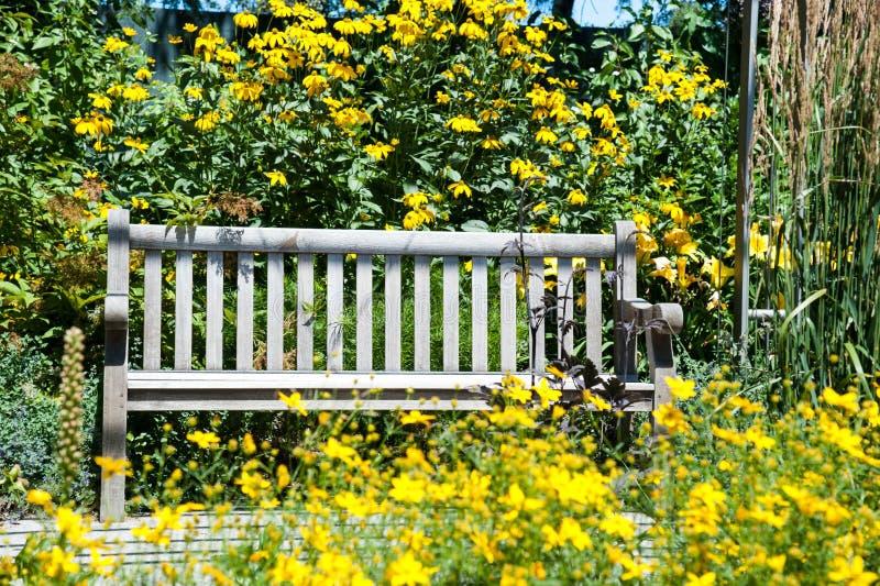 Parkera bänken som omges med gula blommor royaltyfria bilder