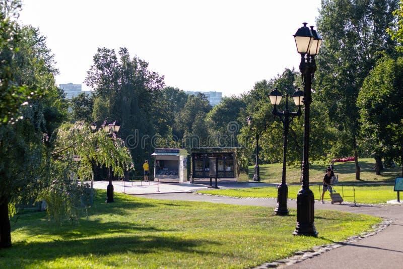 parkera banor Parkera för familjferier Svarta ljus som tänder längs banorna gröna trees arkivbild