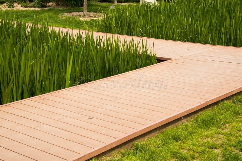 Parkera, den planka stenlade vägen, där är gröna växter, arkivfoton