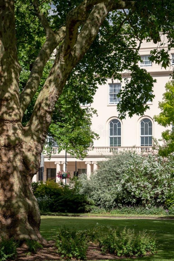 Parkera fyrkanten och parkera Cresent trädgårdar som förbiser de Nash Terrace radhusen som byggs i neoclassical stil på Regent's  royaltyfria foton