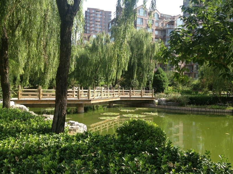 Parkera i Kina royaltyfri bild