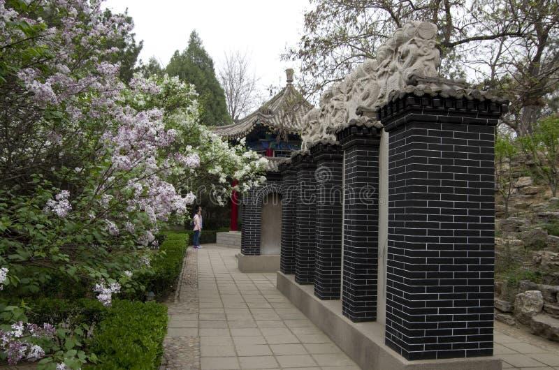 Parkera i Kina med kinesiska minnestavlor royaltyfria foton