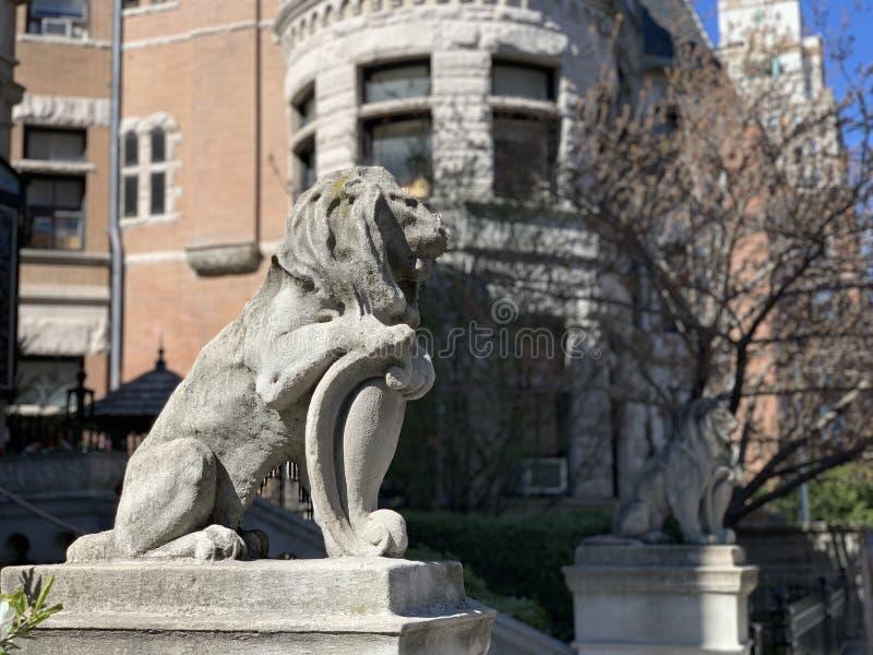 Parkera lutningen, Brooklyn, New York City, USA royaltyfri fotografi