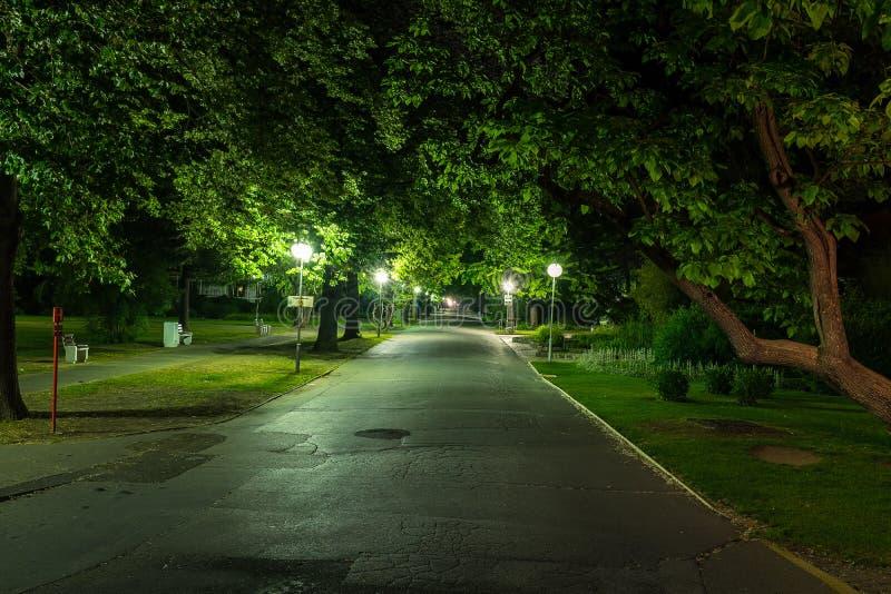 Parkera med gataljus i Piestany Slovakien i natt med inget arkivfoton