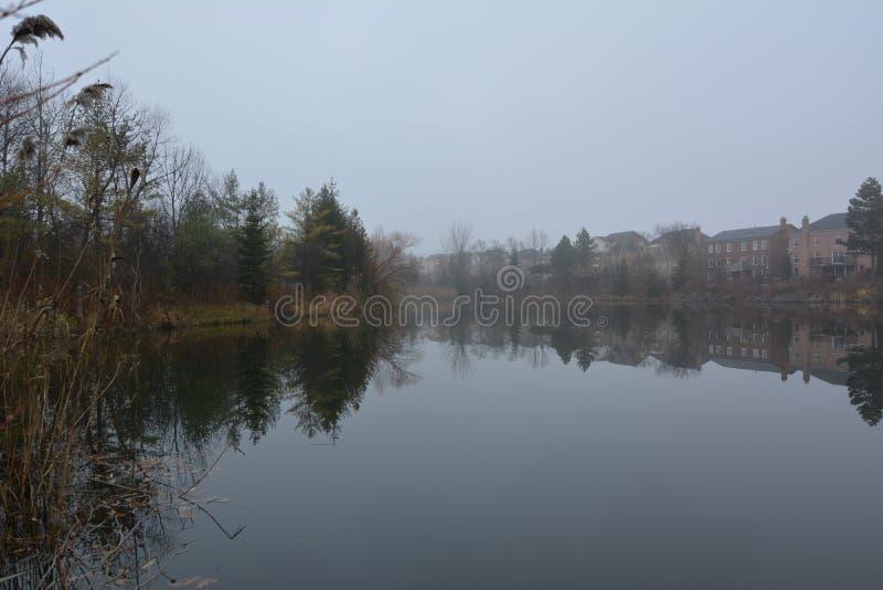 Parkera och sjön i Richmond Hill i Toronto i Kanada i morgonen i vintern arkivfoton