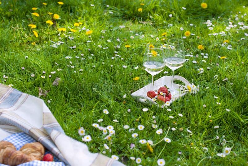 parkera picknicken En grön äng med blommor, en pläd och en flaska av vin Romantisk matställe i natur Fritt avstånd för text royaltyfri foto