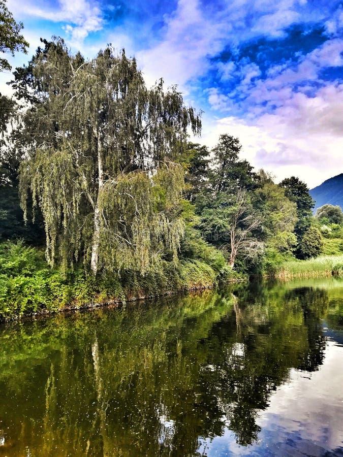 Parkera Rila, sjön, berget, trädet, natur royaltyfri fotografi