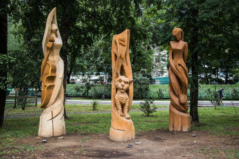 Parkera skulptur som göras av trä arkivbilder