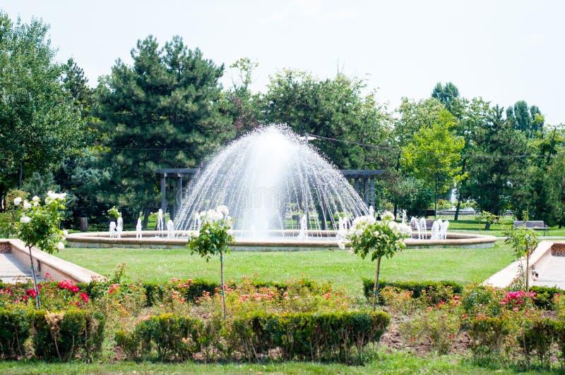 Parkera springbrunnen royaltyfri fotografi