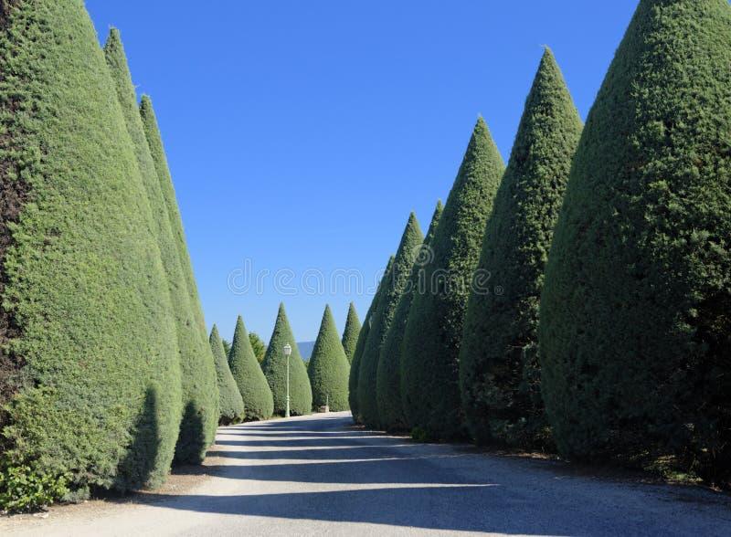 Parkera vägen i Provence arkivfoton