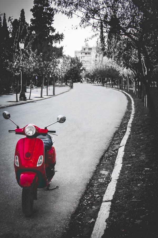 Parkera vägen med en röd cykel royaltyfri fotografi