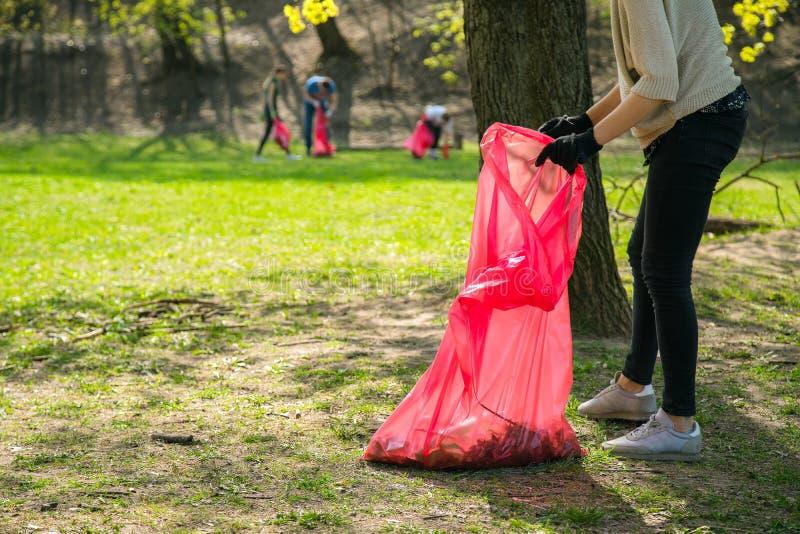 Parkerar b?rande plockning f?r man- och kvinnavolont?ren upp avfall och plast- avfalls offentligt Ungdomarb?rande handskar och s? royaltyfria foton