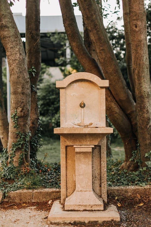 Parkerar den konkreta vattenspringbrunnen för forntida tappning träd fotografering för bildbyråer