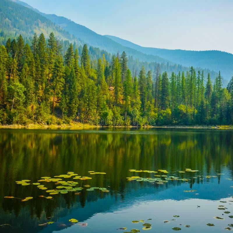 Parkerar den provinsiella Canuck sjö första sjön British Columbia arkivbild
