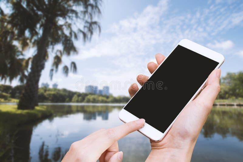 Parkerar den smarta telefonen för kvinnahållen och handlagknappen vid handen med den tomma skärmen för annonsering, och naturbakg royaltyfri bild