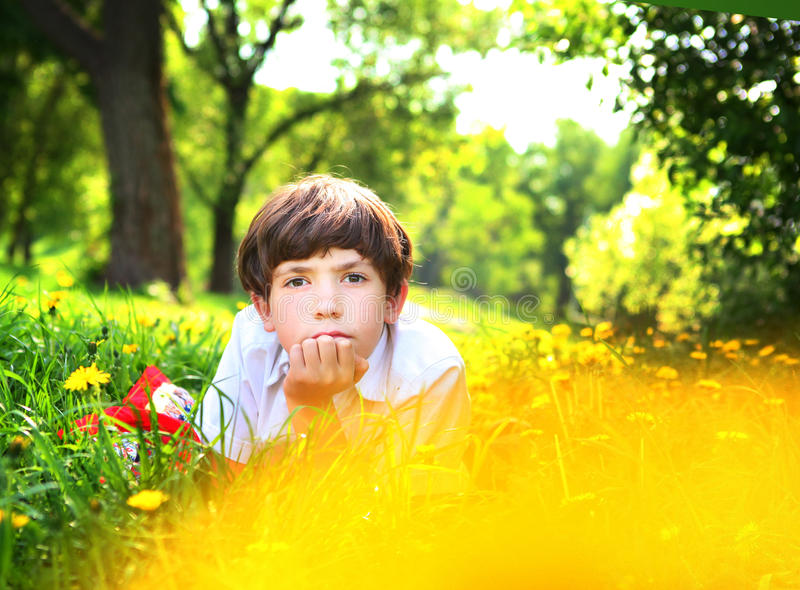 Parkerar den stiliga pojken för preteenen i dandellion royaltyfri fotografi