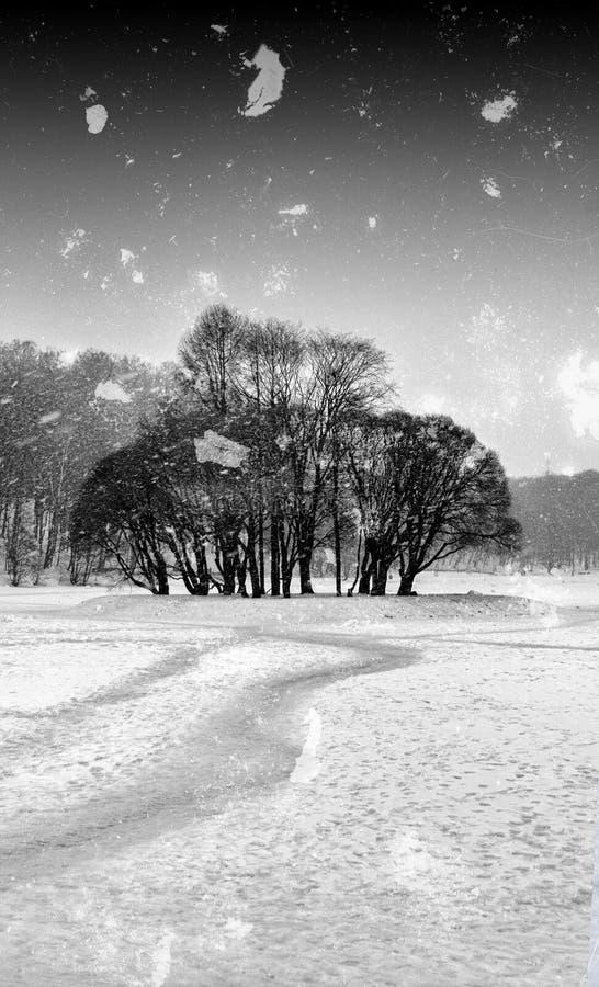 Parkerar den svartvita vintern för vertikal tappning arkivfoto
