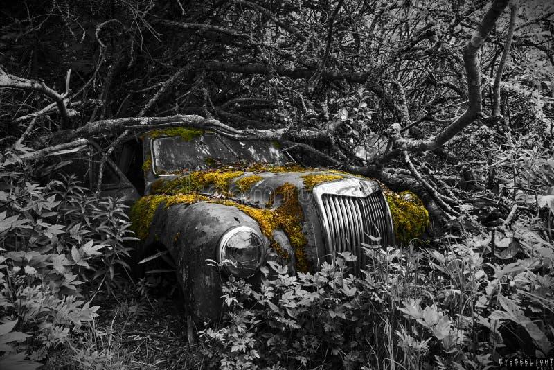 Parkeren op lange termijn stock fotografie