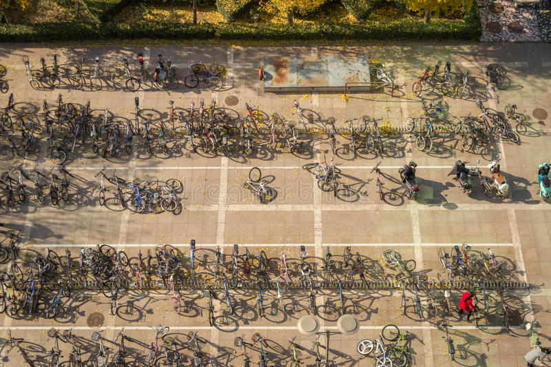 Parkfiets in campus royalty-vrije stock afbeeldingen